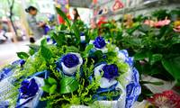 Chinese scientists use genetic technology to create blue roses