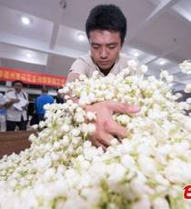Jasmine tea-making contest in East China city